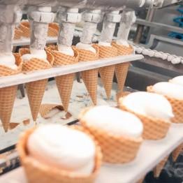 Фабрика мороженого «Колибри» (г. Бор)