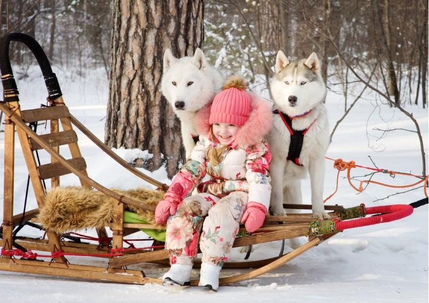 Новогодние туры в Карелии на 3 дня.